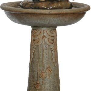 Fontaine d'Eau Fleur Oiseaux