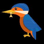 aves de presa